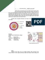 yuma-pinandita-078114137.pdf