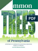 Plants Pennsylvania