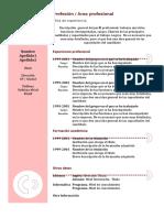 Ejemplo Curriculum Vitae 2 Docx