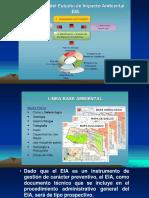 Estructura Del Eia