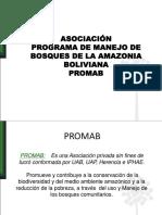 presentacion 2008 experiencias MFC en el PROMAB