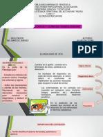 Anatomia Patologica - Copia