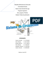 281602400-sistema-de-circulacion-perforacion-pdf.pdf