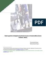 estudio-ergonc3b3mico-de-trabajadores-de-perforacic3b3n-de-pozos.pdf