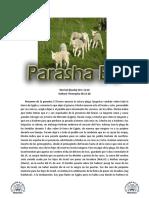Catalogo Armando Alducin