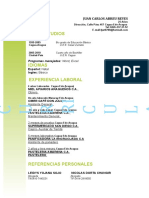 19 Curriculum Vitae Tradicional Verde 97 2003
