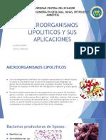 Microorganismos Lipoliticos y sus aplicaciones
