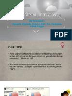 Atrium Septal Defect (Asd)