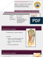 Fisiopatologia de Cavidad Abdominal