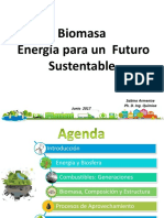 Biomasa Sabino Armenise
