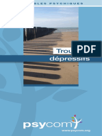 Troubles-depressifs_maj_04_18-WEB.pdf