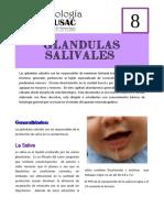 Glándulas salivales.pdf