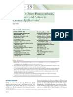 Vitamin D From Photosynthesis,