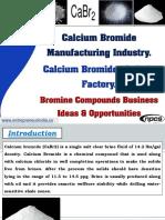 Calcium Bromide Manufacturing Industry
