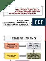 Bioetanol Jambu Mete