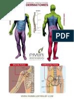 PMIR-Dermatome-Chart.doc