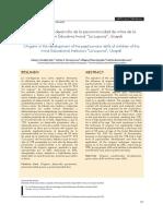 """El origami en el desarrollo de la psicomotricidad de niños de la Institución Educativa Inicial """"La Lupuna"""", Ucayali"""