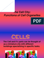 121982835-596-cell-city-ws