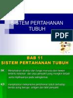 Sistem Pertahanan Tubuh Dosen
