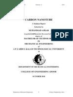 Carbon Nano-tube Seminar Report Rough
