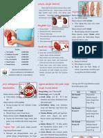 pamflet Gangguan Ginjal Kronik.docx