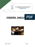 PTS Esmerial Angular