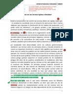 -- Ensayo- NORMAS RÍGIDAS O FLEXIBLES.pdf