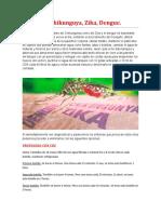 Protocolo OE 2.5 Sublingual (1)