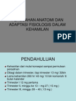 perub_anatomi.ppt_a.ppt