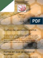 Cultivo de Secreción Uretral y Prostatica
