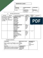NEUROPSICOLOGIA - sesiones -UAP