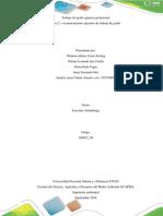 Paso 2 – Reconocimiento Opciones de Trabajo de Grado (204015_50)