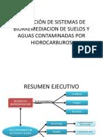 diapos biorremediacion.pdf