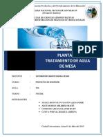PROYECTOS_DE_INVERSION_PLANTA_DE_TRATAMI.docx