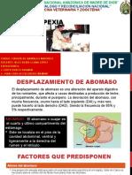 abomasopexia