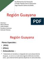 Region  Guayana.pptx