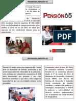 pension 65 agurto.pptx