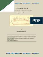 biomecanicadep.pdf
