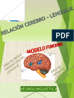 Infografía Cerebro - Lenguaje