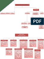 mapa conceptuales Presupuesto