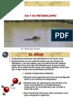 29971472-Rol-Del-Agua-en-la-nutricion-animal.ppt