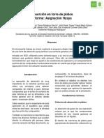 262525835-Absorcion-en-Torre-de-Platos-Informe.pdf