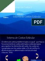 Costos Standar PDF