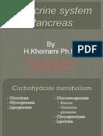 Endocrine Pancreas