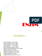ENZIM (KELOMPOK 3B)