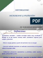 8-metabolismo_microbiano