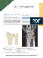ARTICULACION DE LA MANO Y MUÑECA.pdf