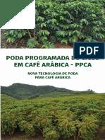 Poda Programada do Café Arábica