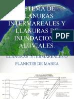 Sistemas de Llanuras Intermareales y Llanuras de Inundación