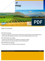 SAP HANA 1.0 Revision Strategy